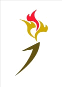 birmingham boiler fix flame logo